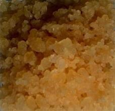 tibicos grains
