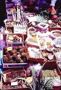 Traditonal food cultures